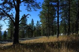 6114 W Lookout Mountain Lane